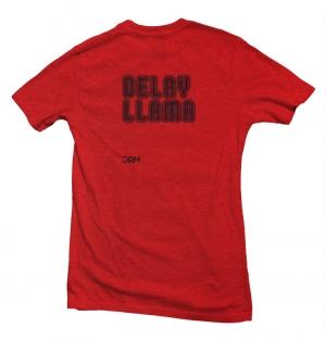 Delay Llama image 3